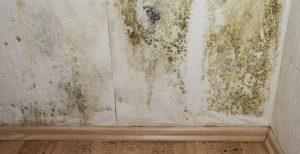 Condensation mould
