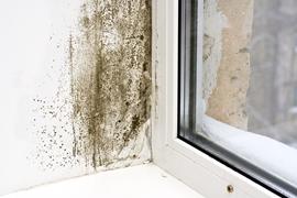 Damp Condensation