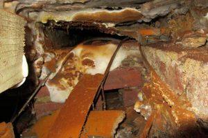 Dry rot subfloor timbers