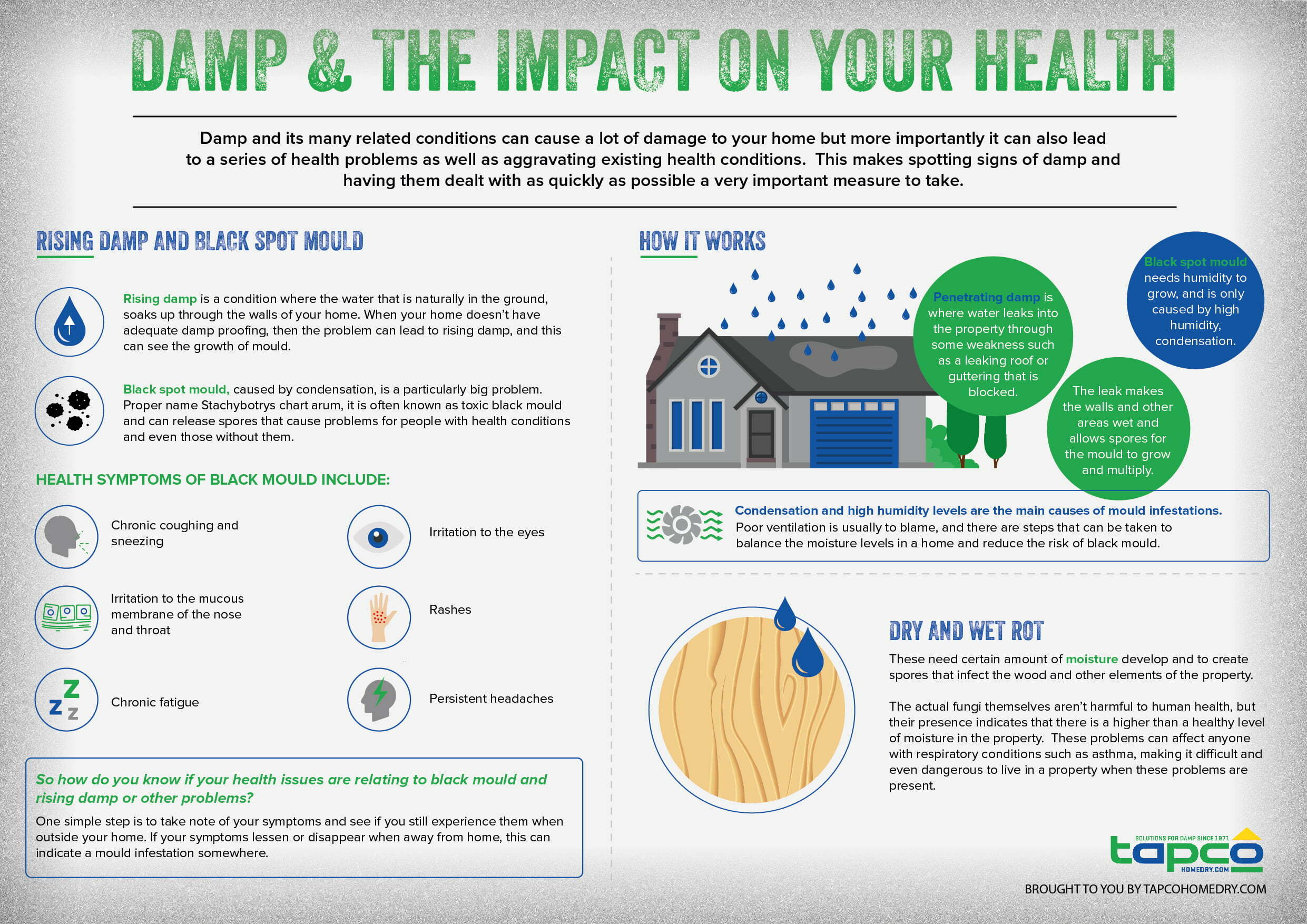Damp health Infographic