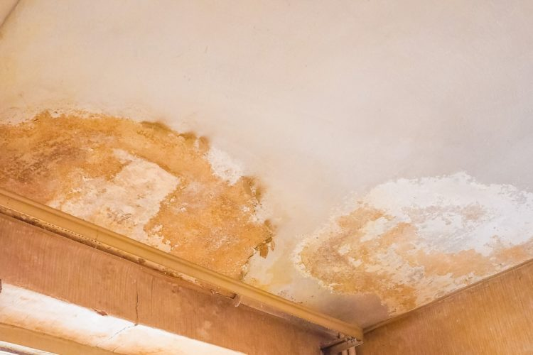 The Causes of Penetrating Damp