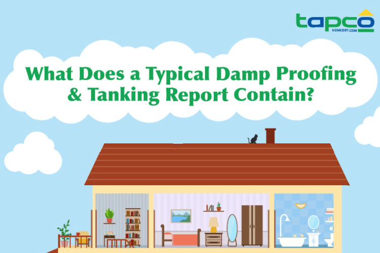 What Does a Typical Damp Proofing & Tanking Report Contain?