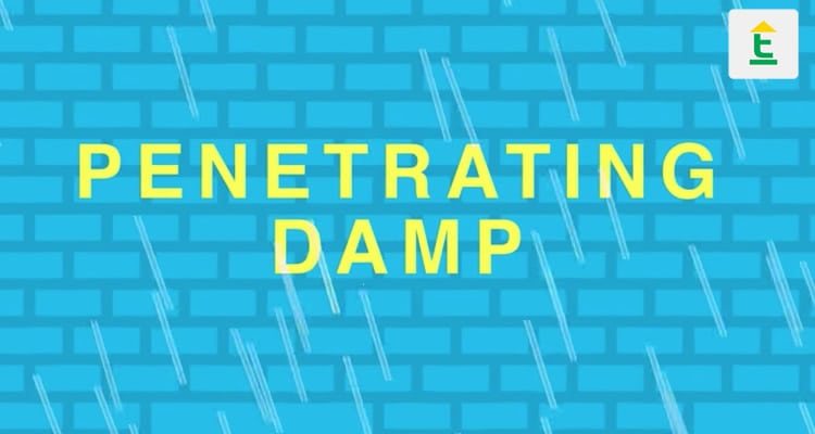 PENETRATING DAMP FROM BELOW THE GROUND