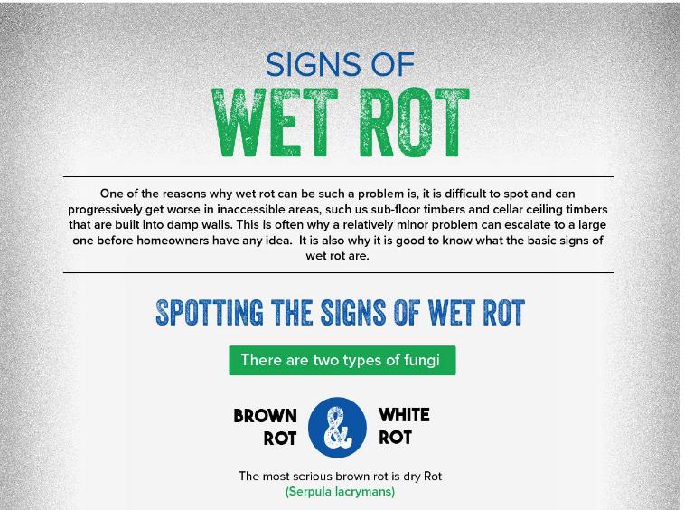 wet rot help