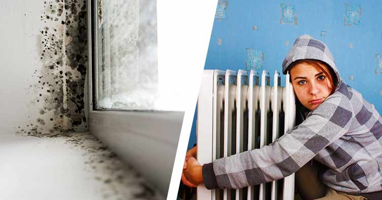Tenants can sue landlords for cold or damp homes under new laws