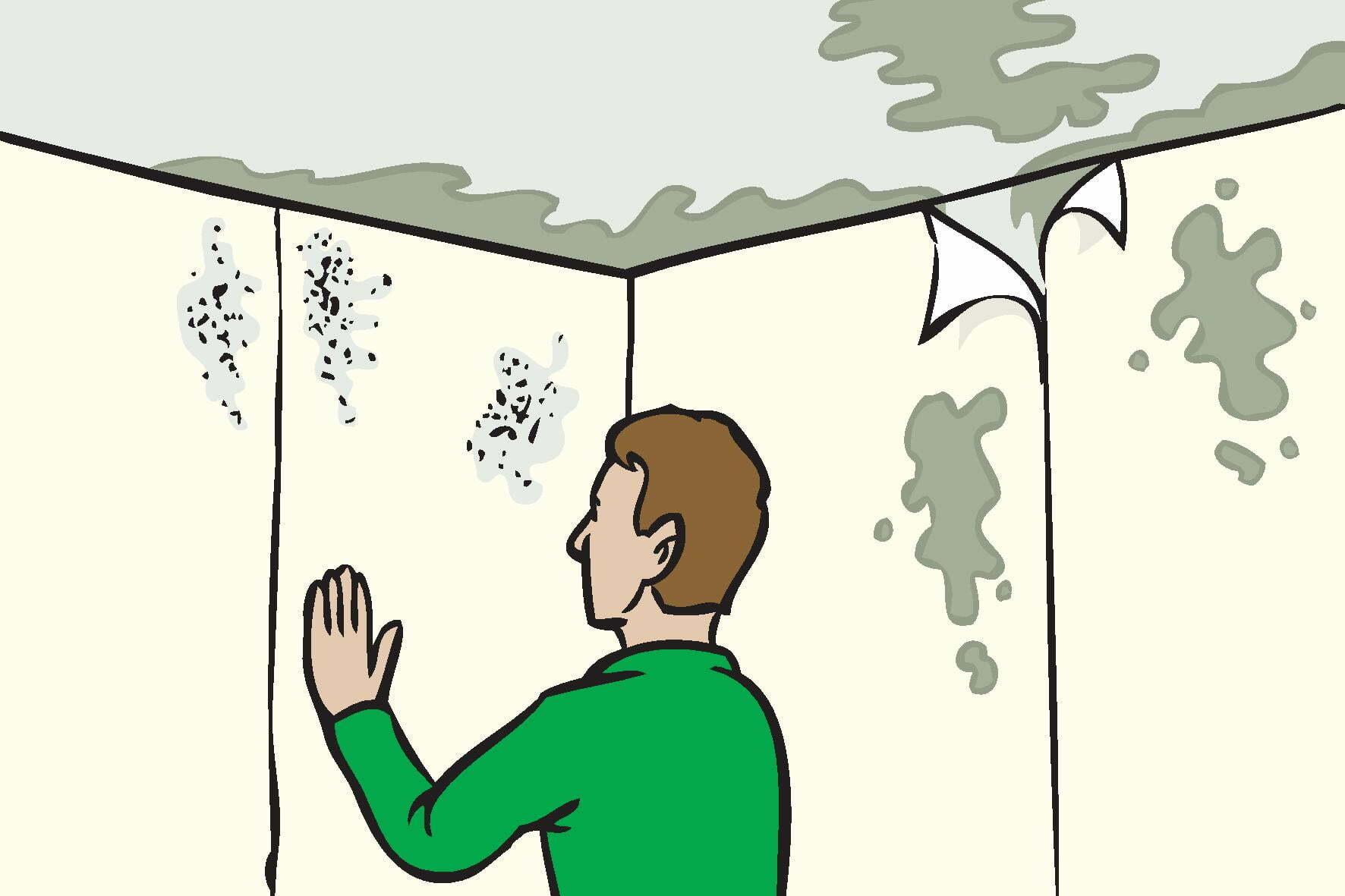 Identifying damp