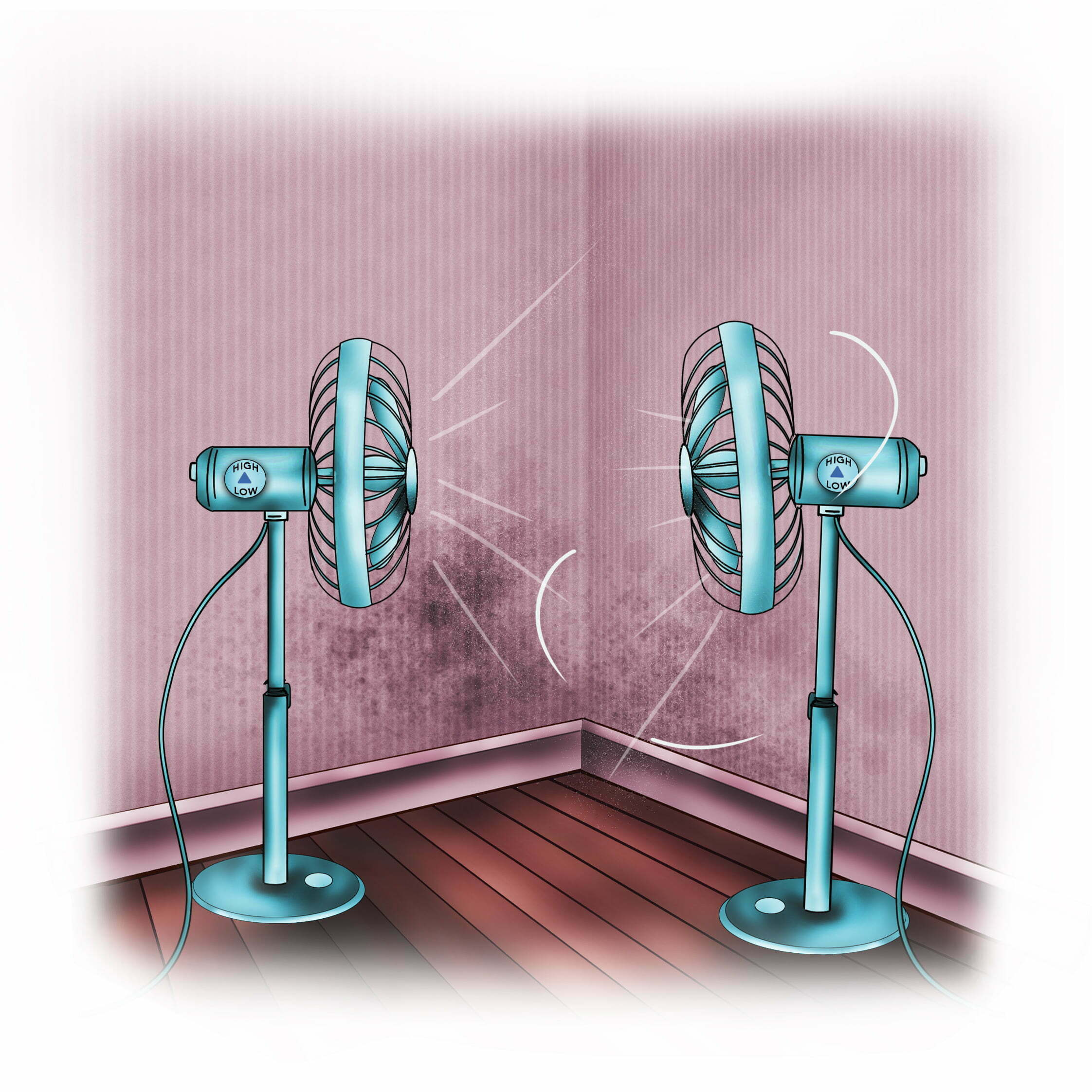 Grab a room fan to dry small damp spots